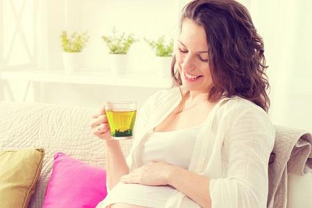 зеленый чай при беременности
