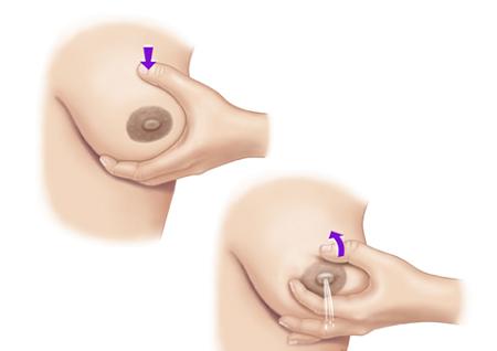 сцеживание грудного молока руками